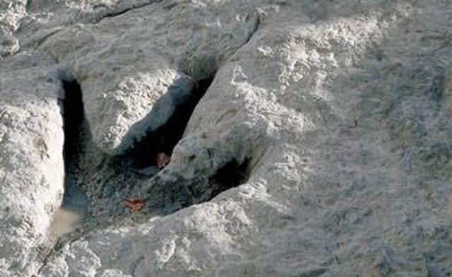 huella dinosaurio_destacado